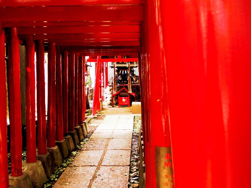 新宿花園神社真紅の回廊