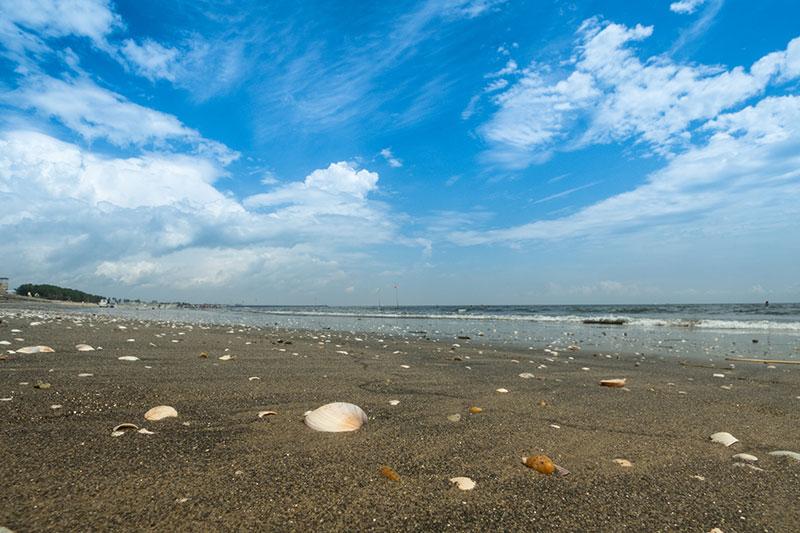 夏の海岸♪