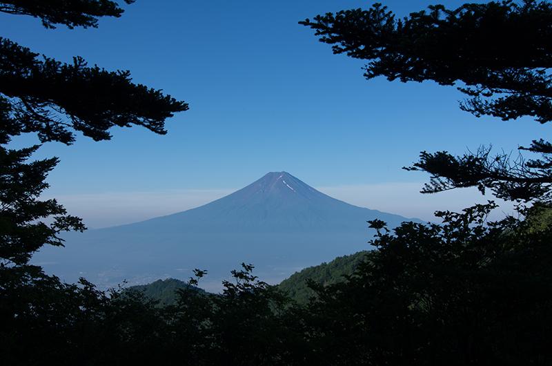 富士と新緑と…