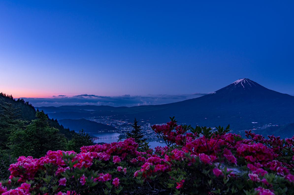 富士山とつつじ
