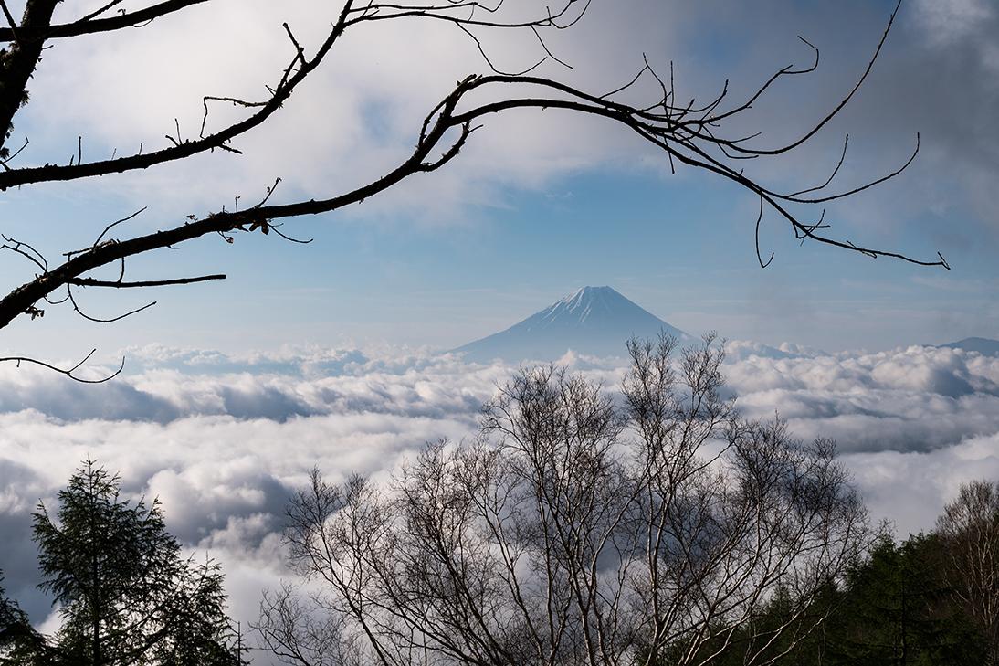 甘利山からの雲海に浮かぶ富士