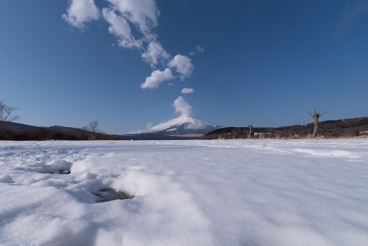 雪原の山中湖