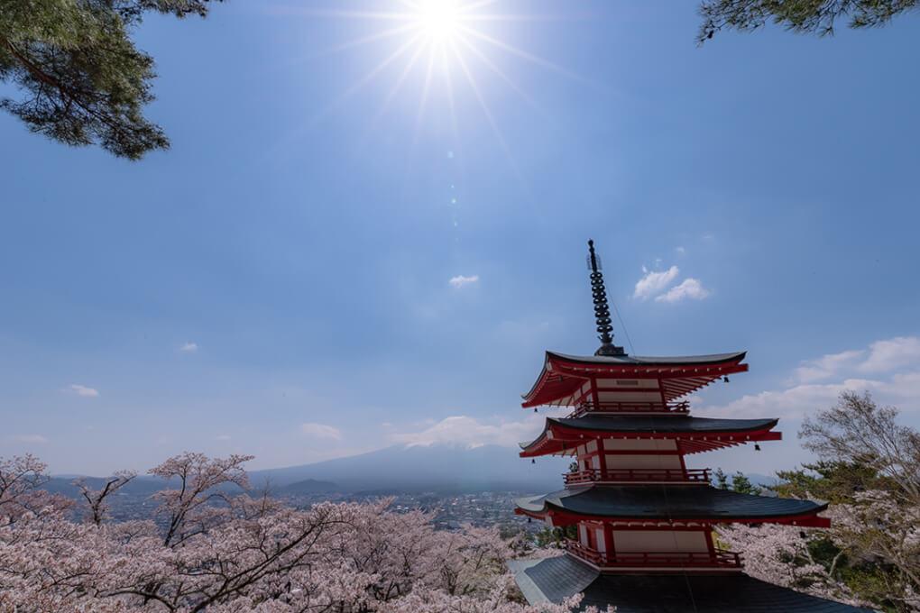 a symbol of japan